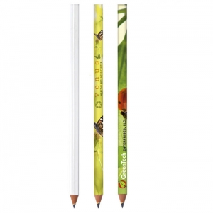 BIC ECOLUTIONS EVOLUTION DIGITAL CUT END PENCIL IMPRESSAO I