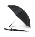 CAMPY. UMBRELLA