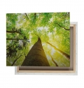 LARGE CANVAS 4 COLORS + WOOD STRUCTURE