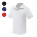 TECHNICAL QUICK DRY POLO DENVER 150G - 100% POLYESTER